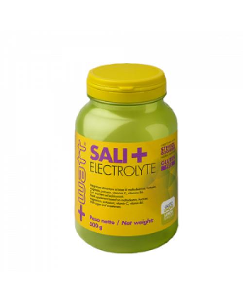+WATT SALI+ ELECTROLYTE 500 G