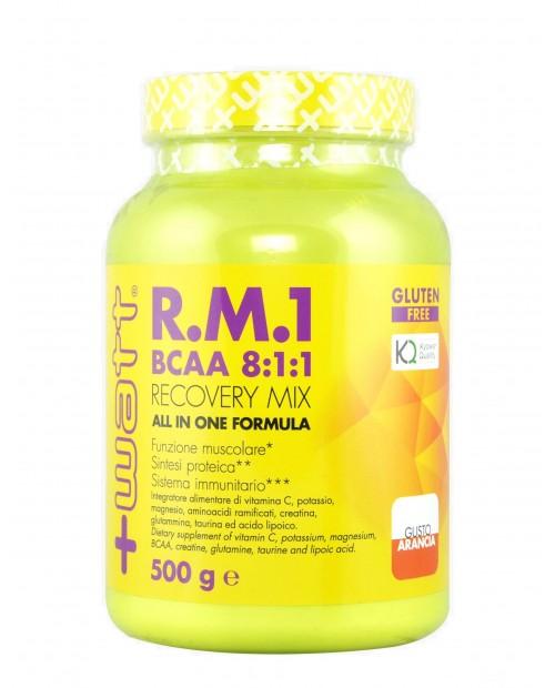 +WATT RM1 NEW FORMULA  (BCAA 8:1:1) 500 grammi